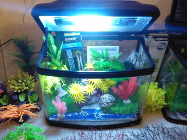 как оборудовать маленький аквариум