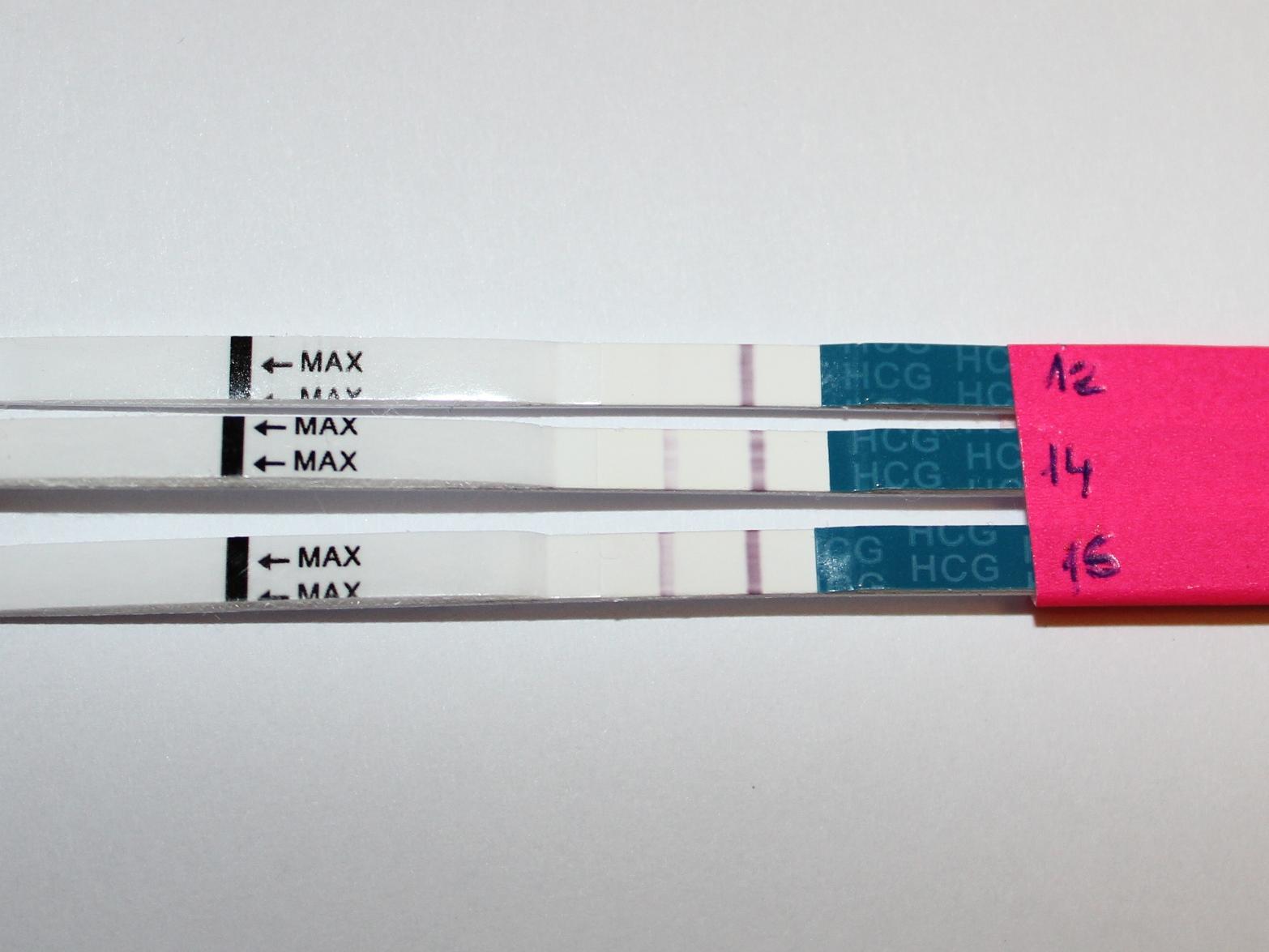 На каком сроке появляются признаки внематочной беременности