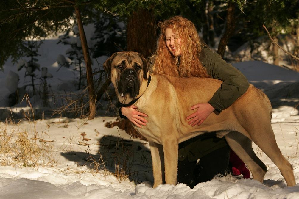девушка овен собака