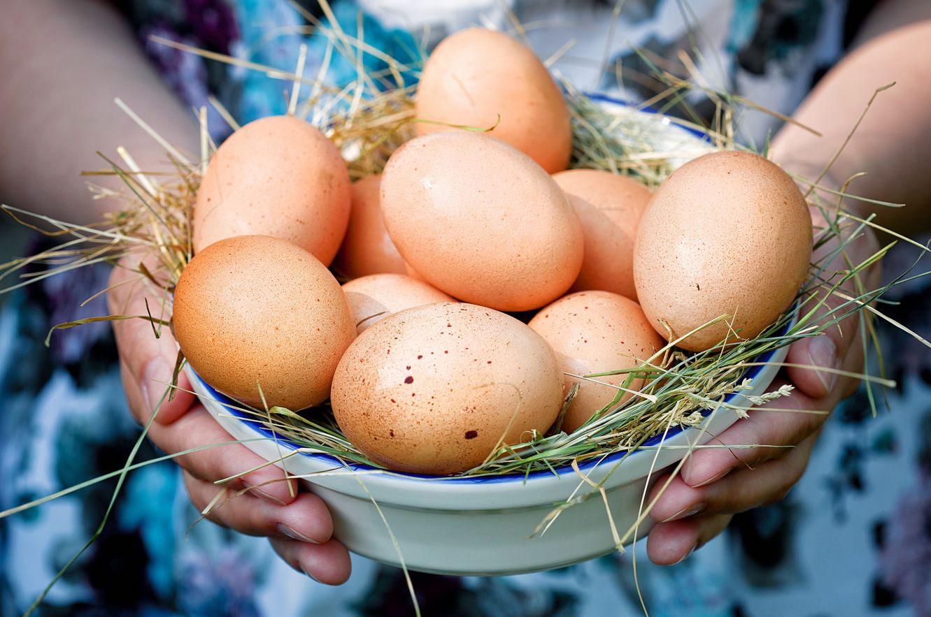 Чем полезны яйца для спортсменов. состав и основные свойства