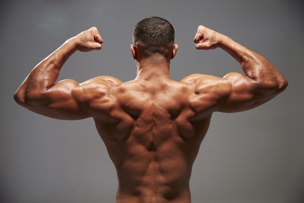 качать мускулы картинки