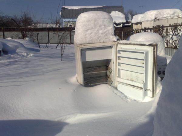 может ли холодильник работать на морозе