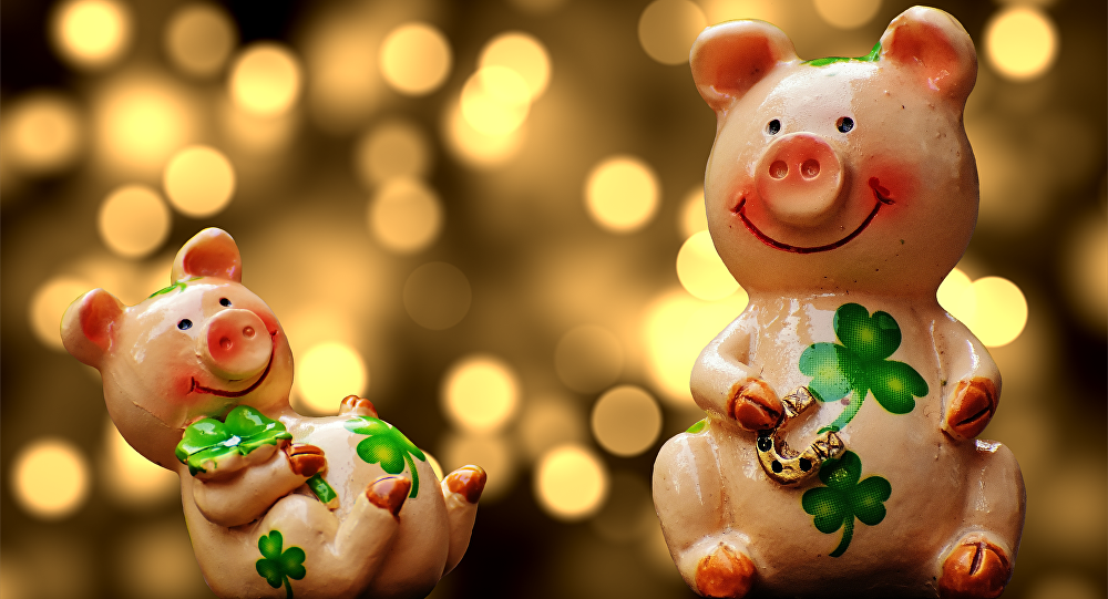 Картинки с свиньями новогодние, написать почтовой