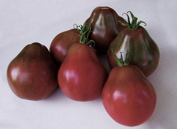томат Японский трюфель
