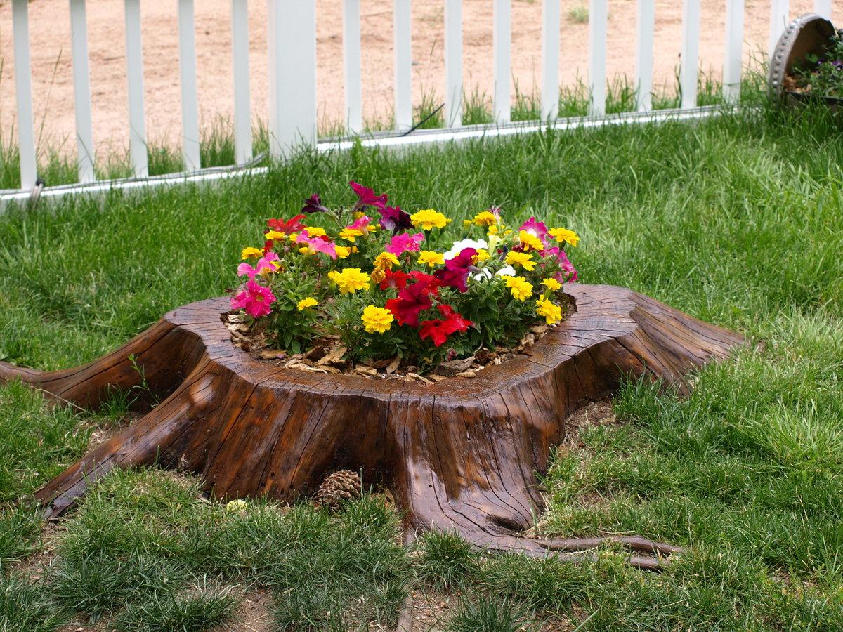 картинки цветников в саду своими руками ввело санкции против