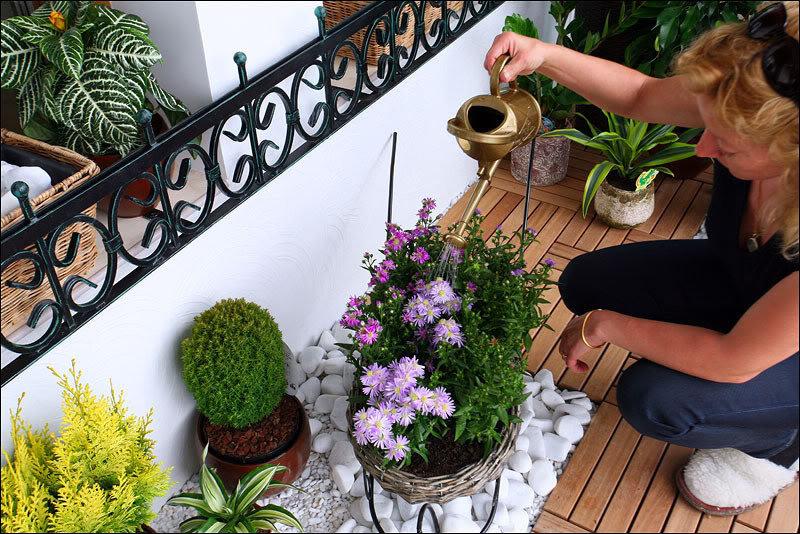 Балкон - мини сад в Вашей квартире