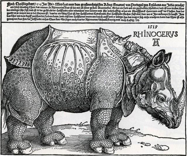 Носорог Дюрера, 1515 г.