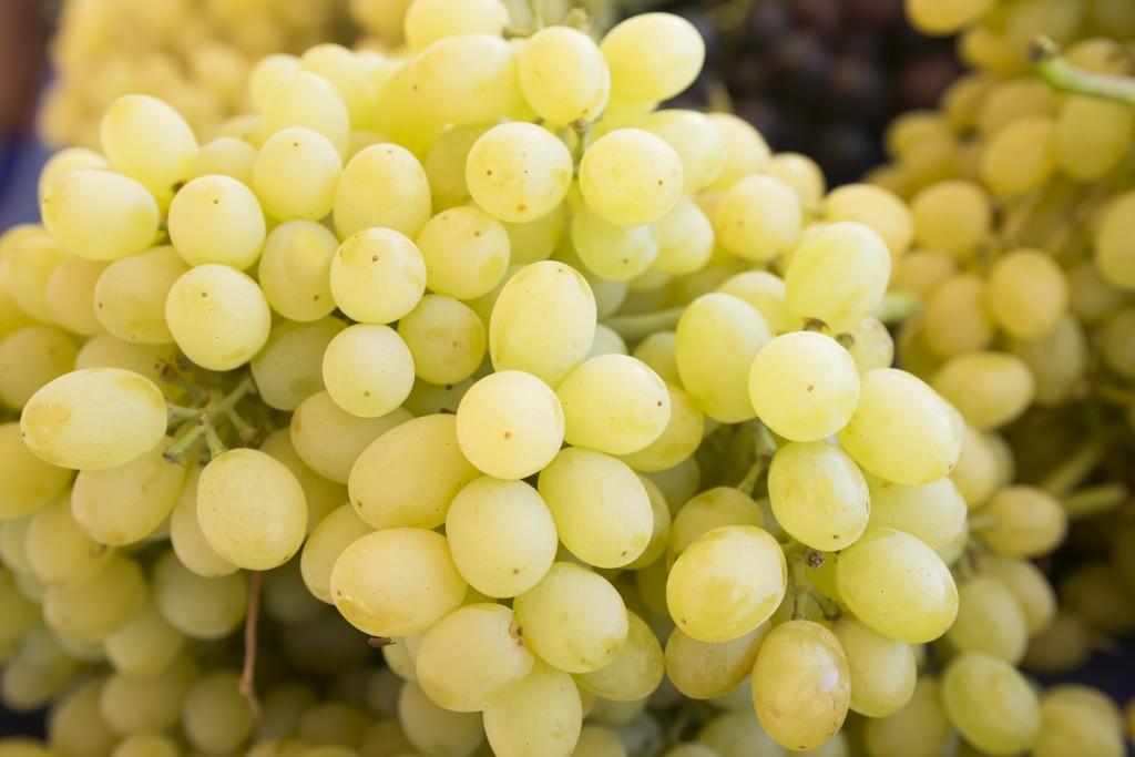 подробное виноград лора описание сорта фото отзывы все слаживалось очень
