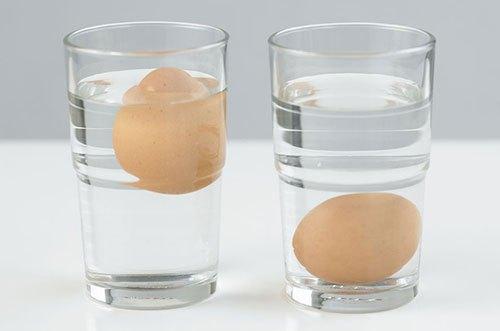 Проверка свежести яиц холодной водой