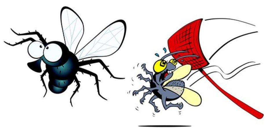 Назойливая муха