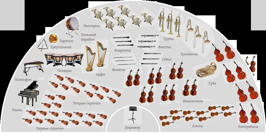 Первая скрипка: значение фразеологизма, синонимы и толкование