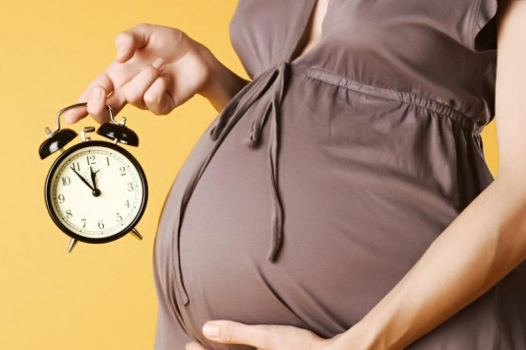 Картинки по периодам беременности