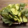 Как приготовить малосольные огурцы вкусно