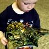Top-10 книг на английском для детей