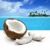 Как приготовить кокосовый ликер