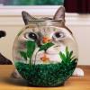 Способы оформления аквариума
