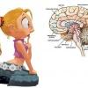 Простые способы обмана сознания человека