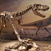 Почему вымерли динозавры: некоторые гипотезы