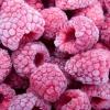 Как правильно замораживать фрукты, овощи и ягоды