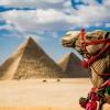 Как добраться до Египта без самолета