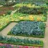 Как оформить огород красиво
