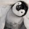 Распространенные мифы об Антарктиде