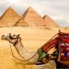 Когда откроют Египет для туристов