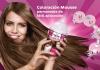 Краска для волос Palette Color Mousse