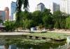Парк Труда и Чжуншань (Китай, Далянь)
