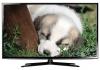 ЖК-телевизор Samsung UE40ES6307
