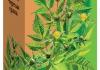 Лекарственные травы Череда