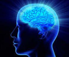 Как сохранить работоспособность мозга
