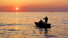 Как ловить рыбу