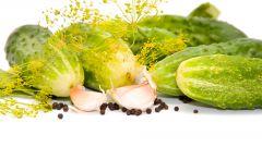 Как готовить малосольные огурцы, чтобы они хрустели