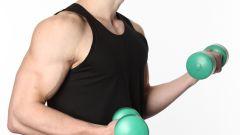 Как тренировать мышцы груди