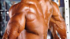 How to build muscle quickly without chemicals