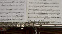 Как научиться нотной грамоте