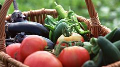 Как приготовить салат из огурцов с помидорами