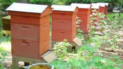 How to make an apiary