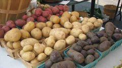 Как выбрать картошку