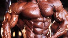 Как накачать мышцы и быть сильнее