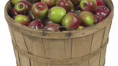 Как квасить яблоки