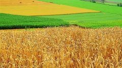 How to make agricultural land