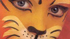 Как нарисовать тигра на лице