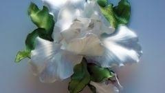 Как сделать цветы пышными