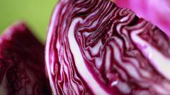Как приготовить красную капусту
