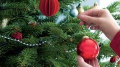 Как сделать так, чтобы елка дольше стояла