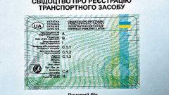 Как поставить автомобиль на учет в Украине
