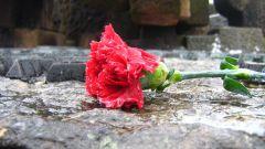 Как провести вечер памяти погибших на войне