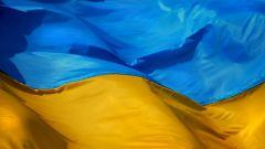 Как проверить лицензию в Украине